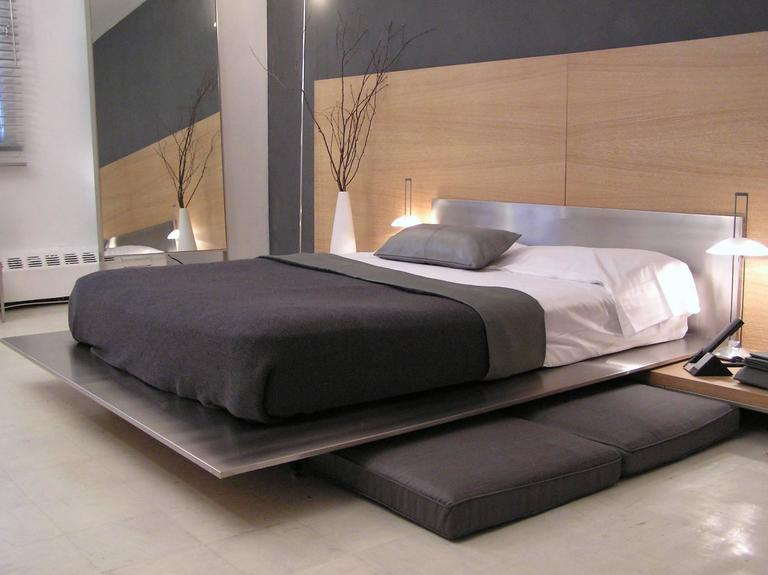 Contemporary Minimal Platform Bed In Brushed Stainless