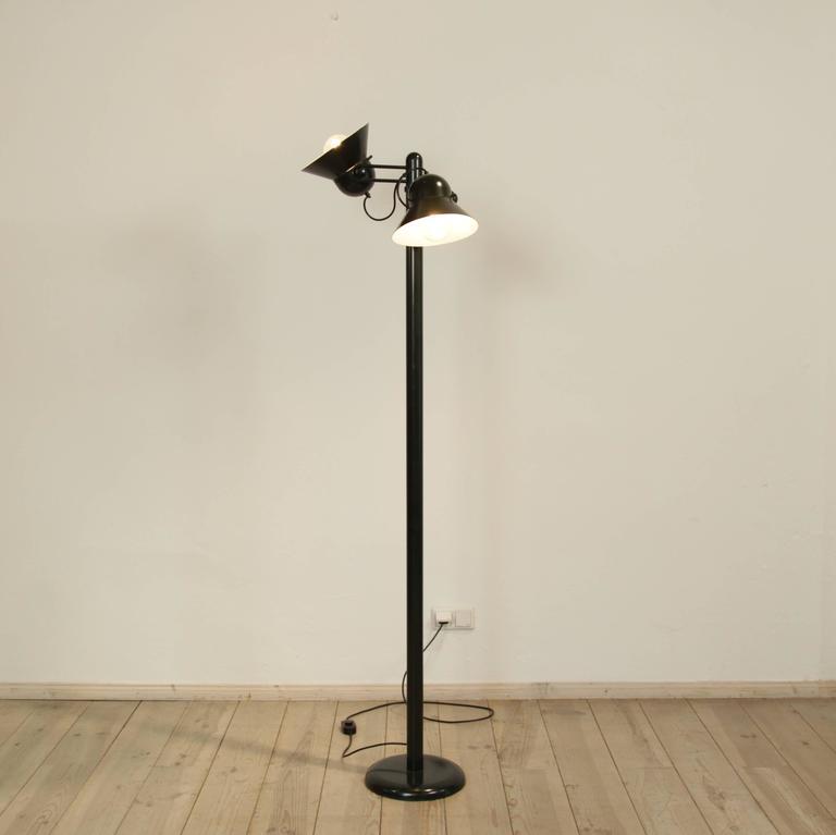 Mid-Century Modern Gae Aulenti Floor Lamp by Stilnovo, circa 1975 For Sale