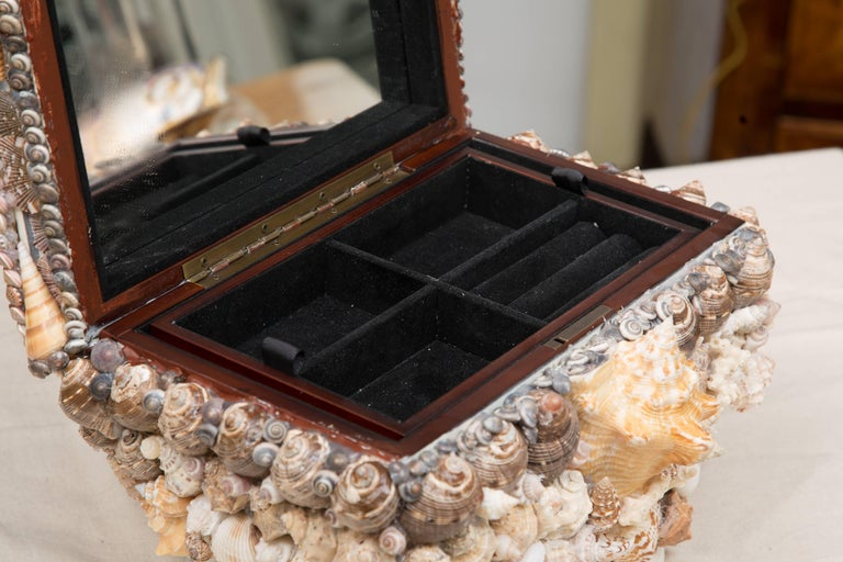 This lidded box is over-all encrusted with a variety of shells, 20th century.