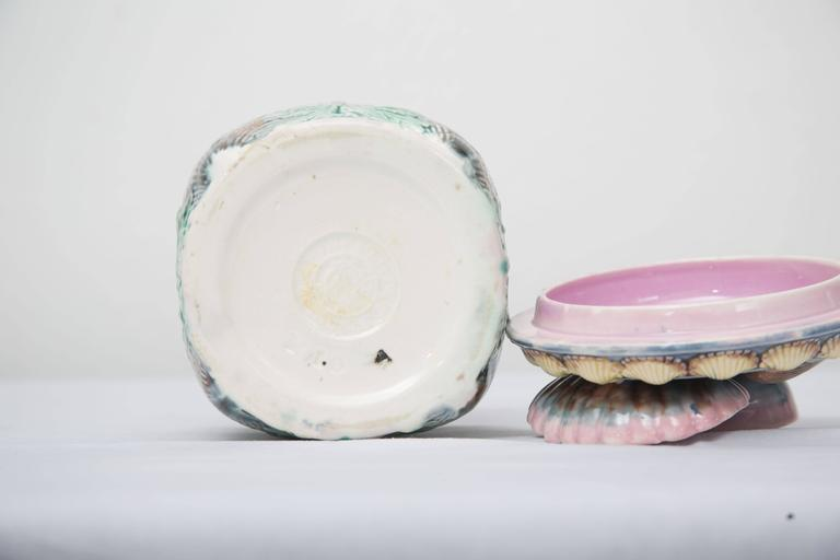 American 19th Century Shell and Seaweed Etruscan Majolica Lidded Jar For Sale