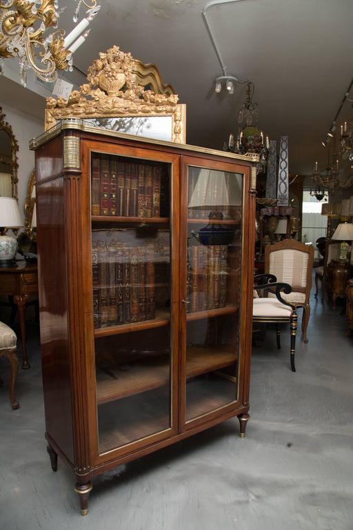 19th Century, Louis XVI Style Mahogany Bookcase For Sale 3