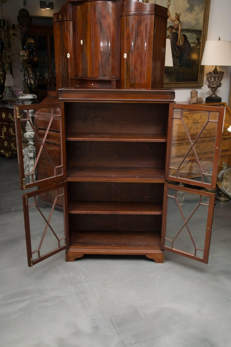 Stained 19th Century Dwarf English Bookcase For Sale