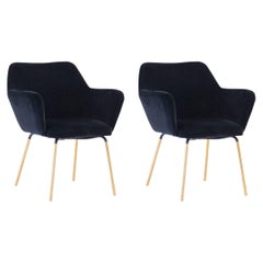 Gio Ponti for Arflex Pair of Airone Black Velvet Armchairs, 1950s Dining Chairs