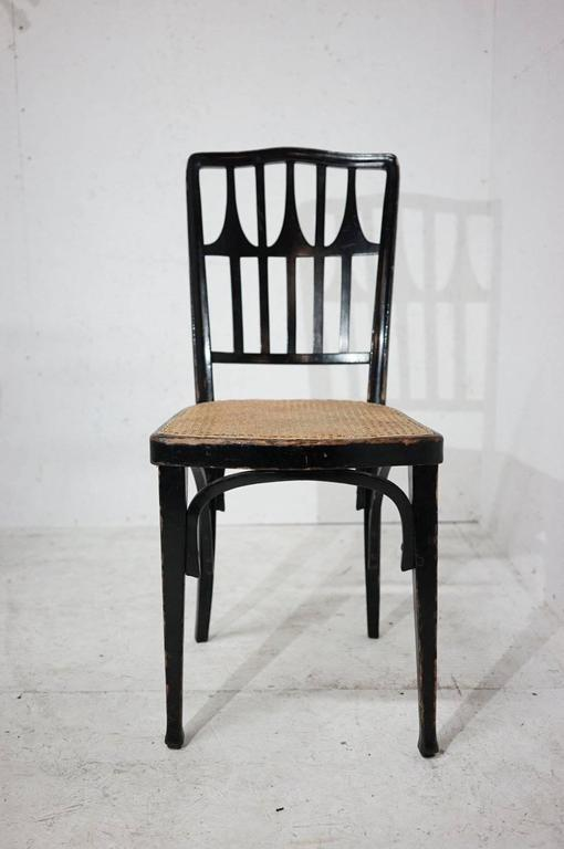 A Set Of 20 Ebonized Bentwood Dining Chairs.