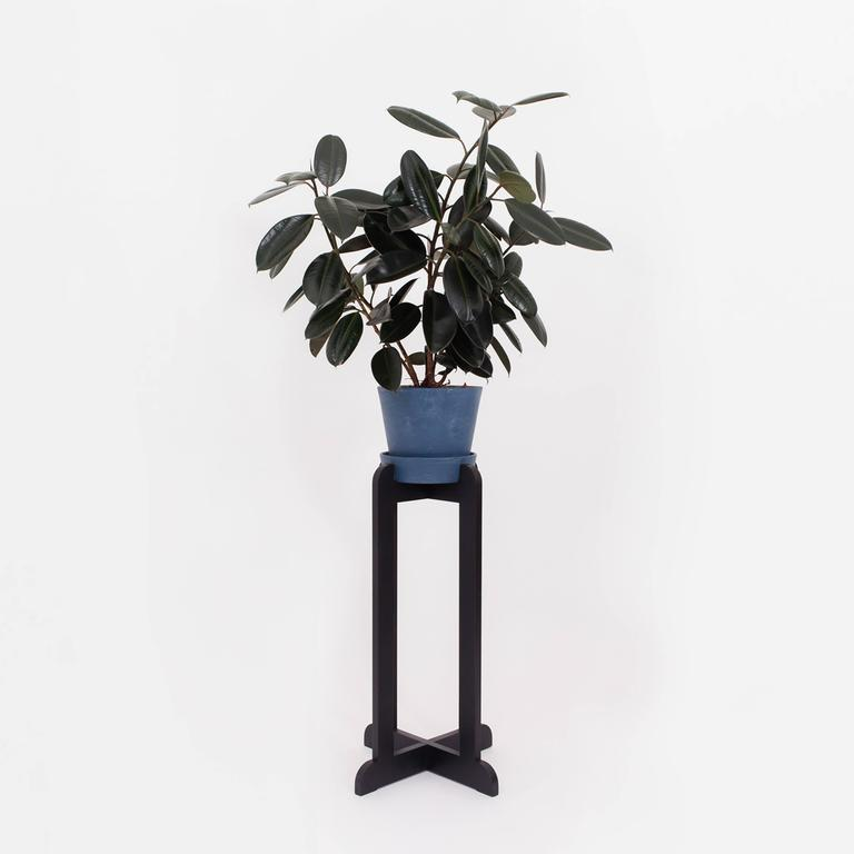 The QE2 plant stand is the furniture your favourite plant deserves. We're sure you'll enjoy its steady elegance as well. Listed in ebonized maple at 35