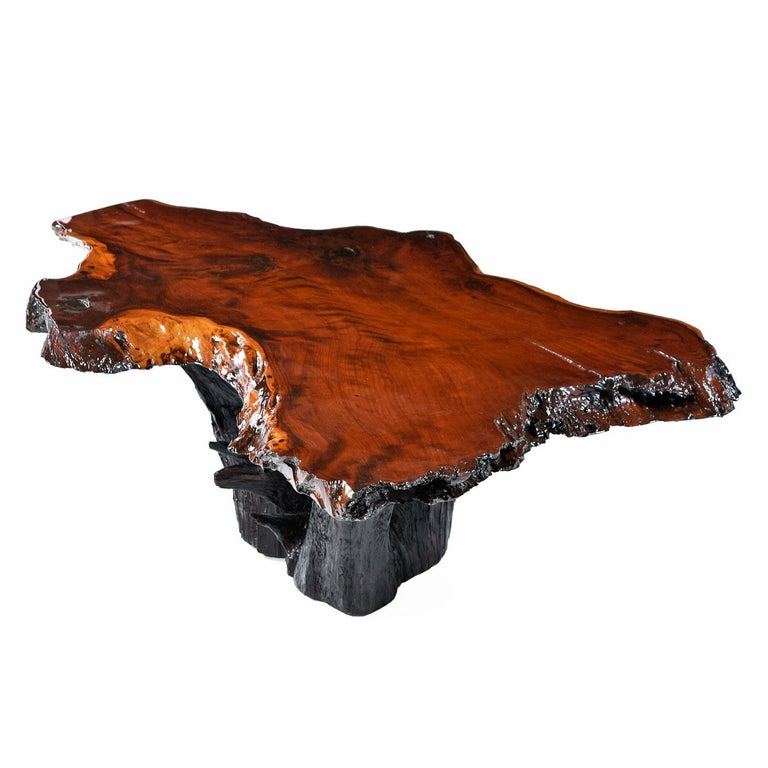 Live Edge Cypress Root Stump Slab Coffee Table For Sale