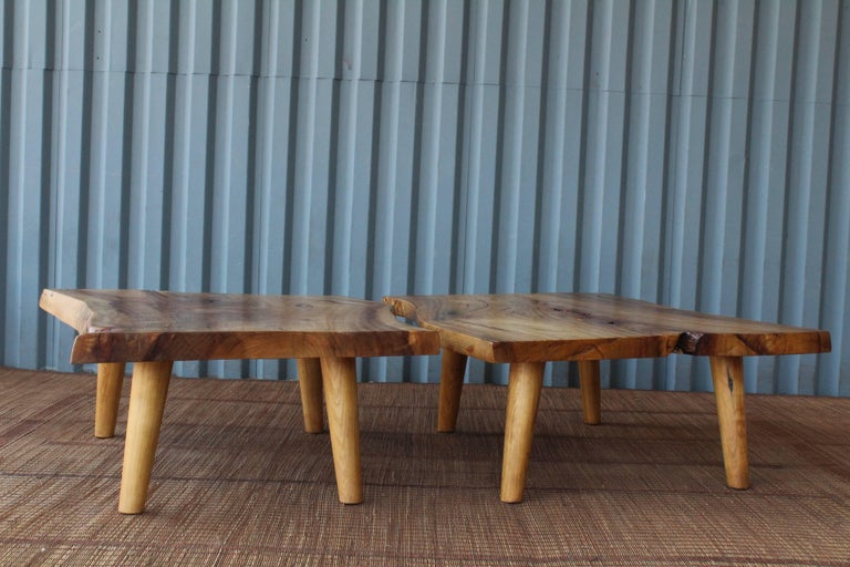 Live Edge Camphor Wood Coffee Tables For Sale 4