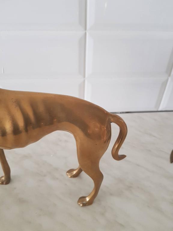 20th Century  Vintage Brass Greyhound Hollywood Regency, 1970s For Sale