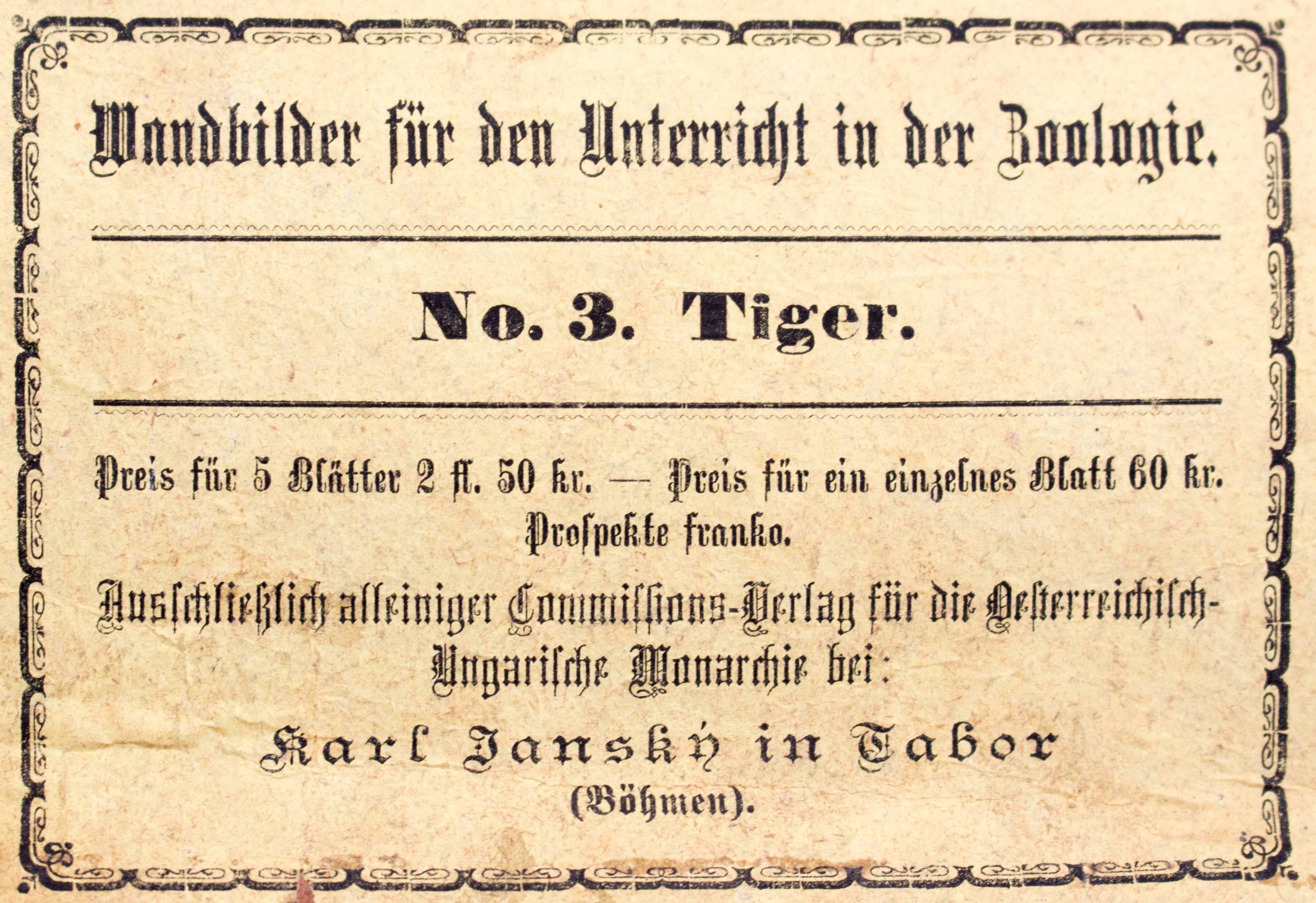 Wall Chart Tiger, Lithograph by Karl Jansky, Böhmen, 1887 For Sale ...