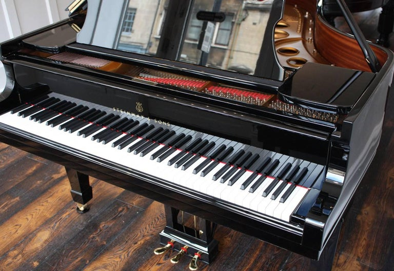 Steinway Model O Restored Grand Piano 4