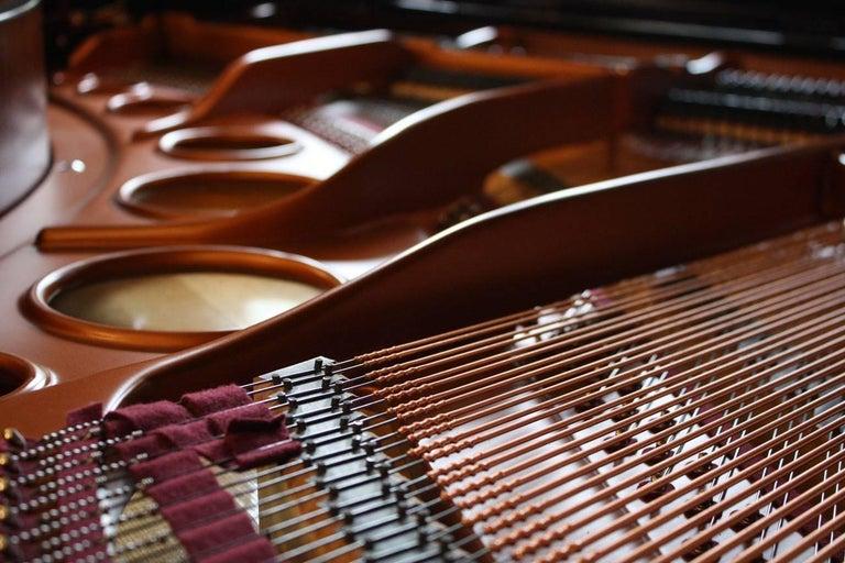 Bösendorfer 170 Grand Piano 7