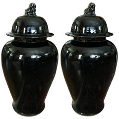 Chinese Lidded Ginger Jars