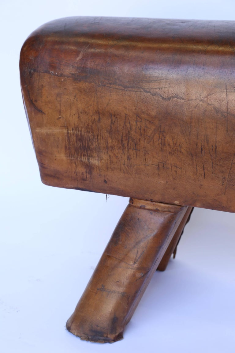 Vintage Leather Pommel Horse At 1stdibs