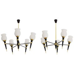 French Mid-20th Century Pair of Chandeliers, 1950s