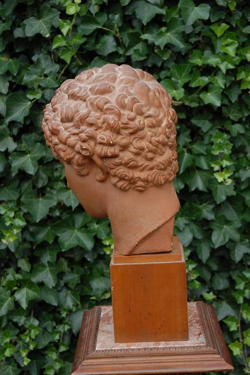 Near Antique And Signed Plaster Bust Head On A Wooden Base Greek God Hermes