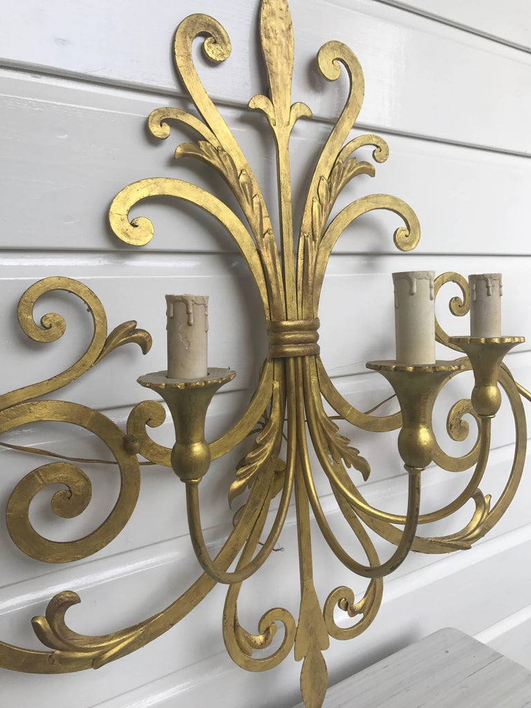 Italian Large Wrought Iron Five-Light Single Wall Sconce Labelled Palladio, Italy For Sale