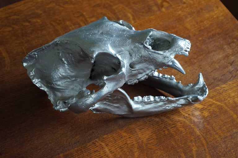 Impressive and Decorative, Chrome Painted Modern Bronze Bear Skull Sculpture In Excellent Condition For Sale In Lisse, NL