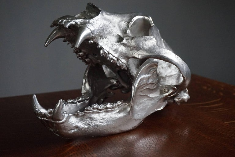 Impressive and Decorative, Chrome Painted Modern Bronze Bear Skull Sculpture For Sale 3