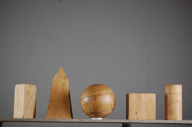 Collection of Artist Geometric Forms For Sale 3
