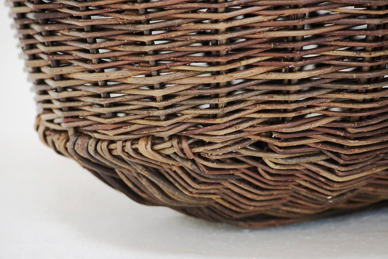 Willow Crafted basket by Joe Hogan, Irland, 2009 For Sale