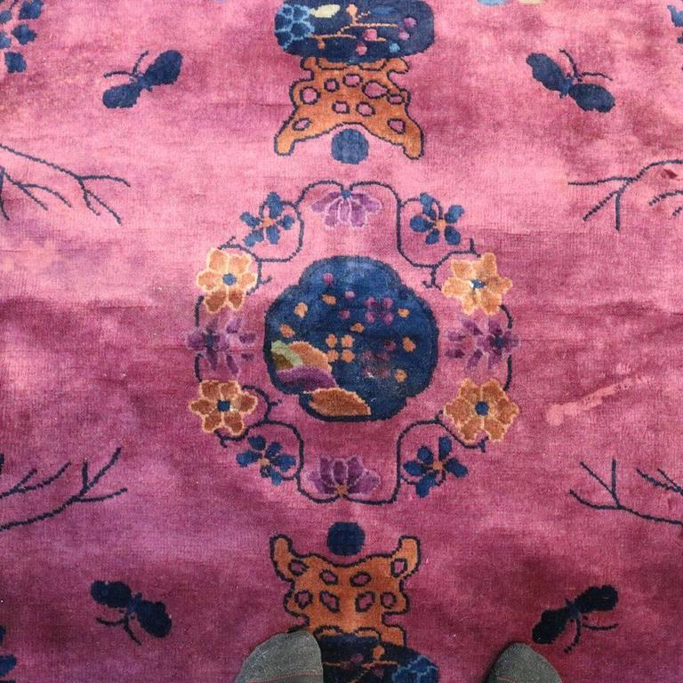 Antique Chinese Nichols Oriental Carpet Circa 1930 At 1stdibs