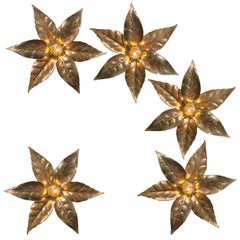 Set of Willy Daro Style Brass Flowers Wall Lights by Massive Lighting, 1970