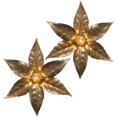 Pair of Willy Daro Style Massive Brass Flowers Wall Lights, 1970