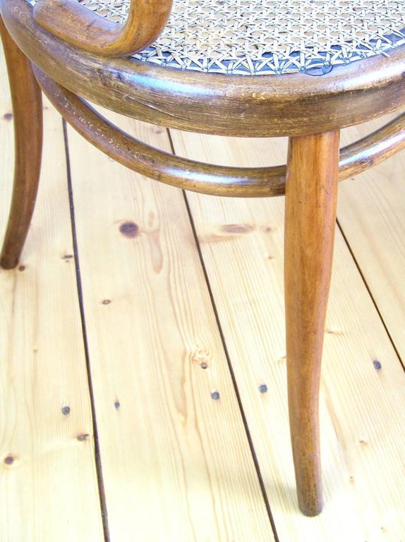 sofa gebr der thonet circa 1875 at 1stdibs. Black Bedroom Furniture Sets. Home Design Ideas
