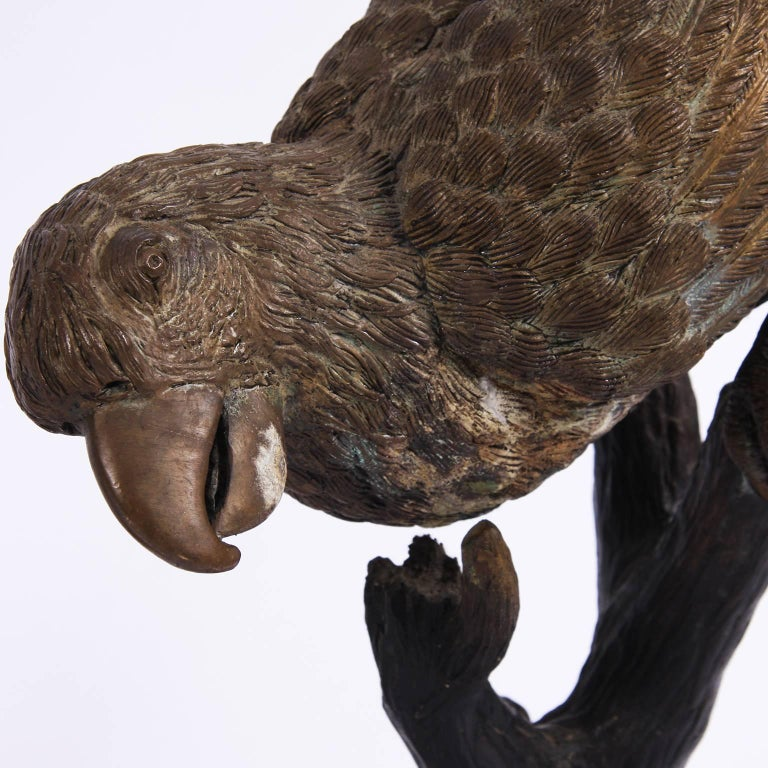French Pair of Parrots Sculptures, Early 20th Century For Sale