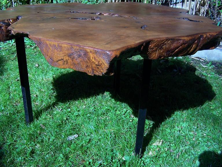 elm tree trunk coffee table  1950 at 1stdibs