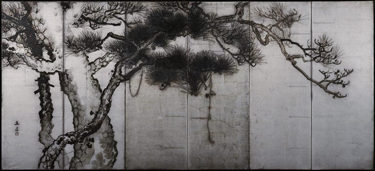 Pine trees