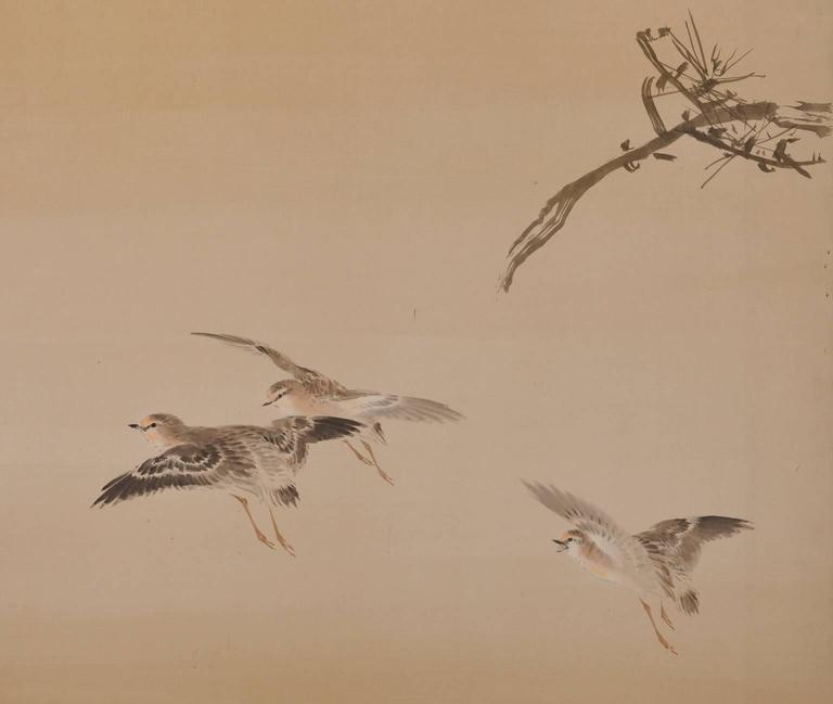 Konoshima Okoku (1877-1938), Pine & Plover, Japanese Folding Screen 2