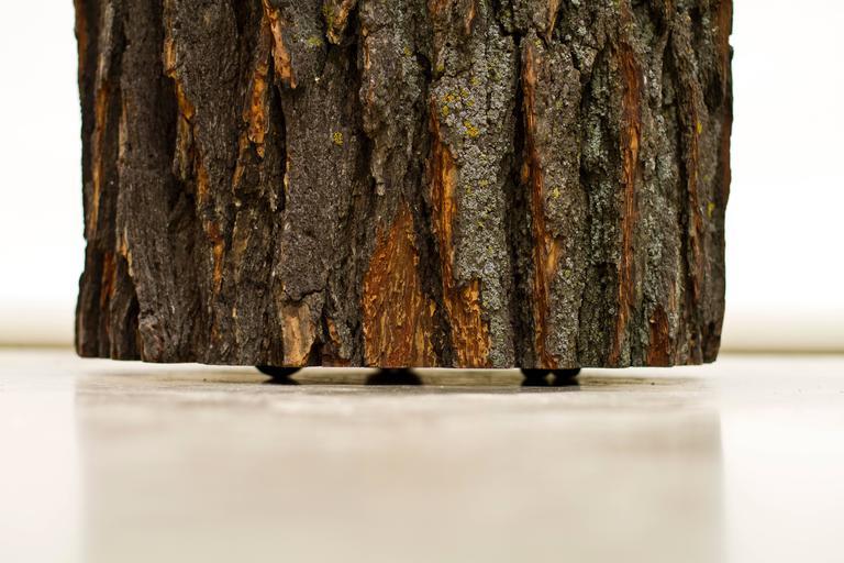 Hardwood Log Type E in Solid Red Oak, Bark on by Tucker Viemeister for Wooda For Sale