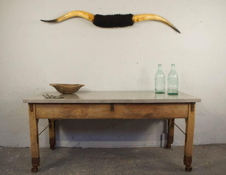 Mid-20th Century Taxidermy Mounted Longhorn Steer Horns For Sale
