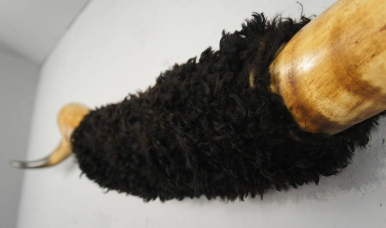Taxidermy Mounted Longhorn Steer Horns In Excellent Condition For Sale In Culverthorpe, Lincs