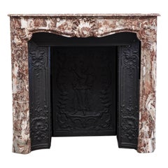18th Century Louis XV Parisian Marble Fireplace Mantelpiece and Interior