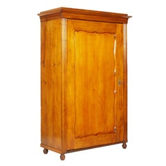19th Century Biedermeier Cupboard Wardrobe in Birch Restored Polished to Wax
