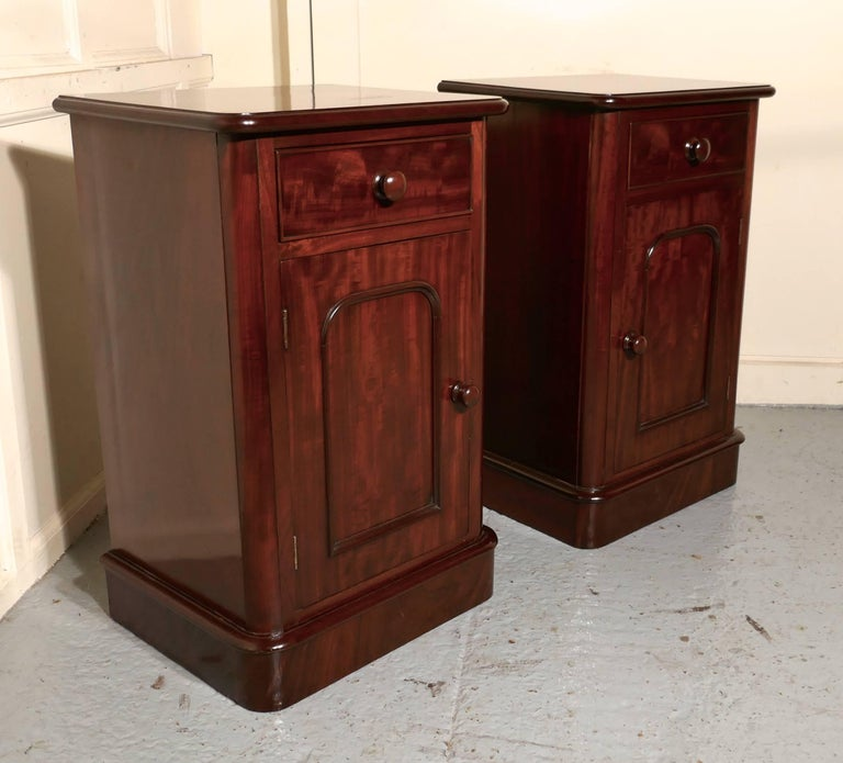 Pair of Victorian Mahogany Bedside Cupboards For Sale 2