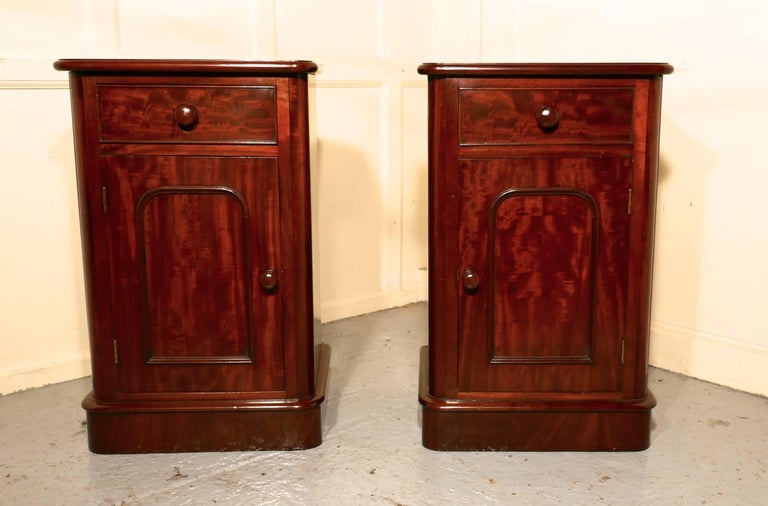 Pair of Victorian Mahogany Bedside Cupboards For Sale 3