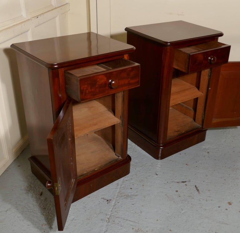 19th Century Pair of Victorian Mahogany Bedside Cupboards For Sale