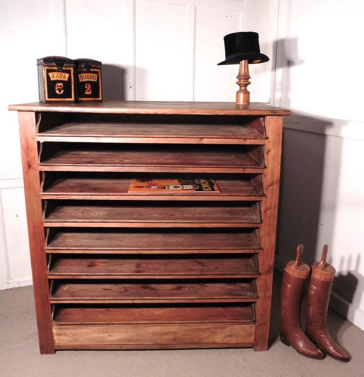 19th Century French Artist's Plan Chest, Rustic Pine Drawing ...