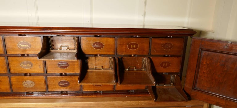 19th Century Long Mahogany Estate Cupboard Filing Drawers For Sale 1