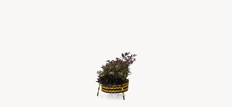 Moroso Jardin Suspendu Woven Baskets / Planters for Indoor and Outdoor 2