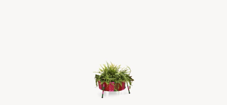 Moroso Jardin Suspendu Woven Baskets / Planters for Indoor and Outdoor 4