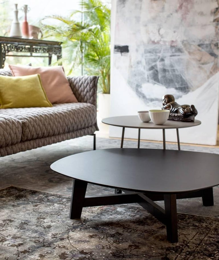 Moroso Phoenix Coffee Table With Wood Base And Various Color Top - Super low coffee table