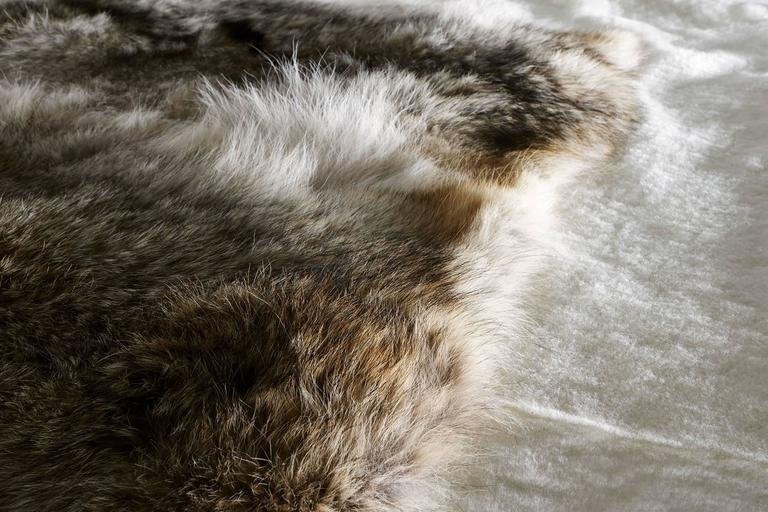 Shearling and Coyote Fur Rug 3