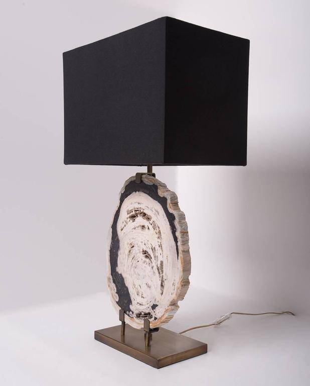 Petrified Wood Slab Table Lamp Brass Brushed Base With