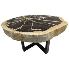 Indonesian Petrified Wood Side Table with Metal Black Powder Coated Base