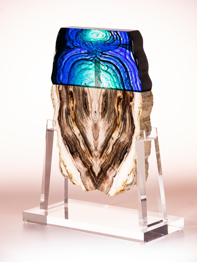 Petrified wood and glass sculpture collaboration between glass artist Orfeo Quagliata and Pietra Gallery artist Ernesto Duran.