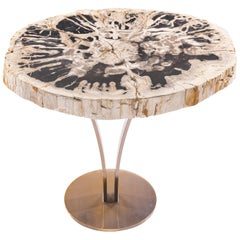 Side or Cocktail Table, Petrified Wood Top with Gold Color Metal Base